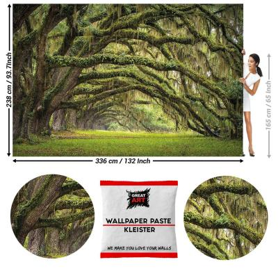 GREAT ART Foto Mural Bosque Mistico de Cedros 336 x 238 cm